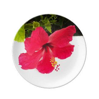 Hibiscus flower porcelain plate