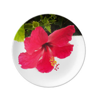 Hibiscus flower porcelain plate