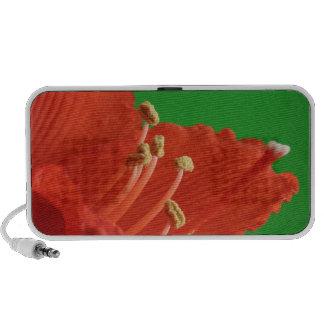 Hibiscus Flower Speaker