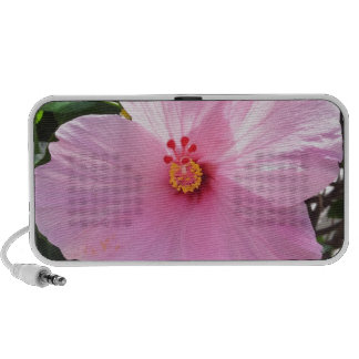 Hibiscus Flower Speaker System