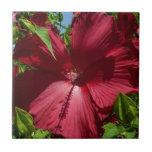 Hibiscus Flower Tile