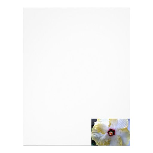 hibiscus flower white yellow center picture personalized letterhead