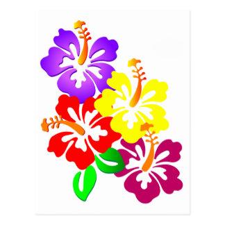 HIBISCUS FLOWERS COLORFUL CORNER VECTOR GRAPHICS L POSTCARD