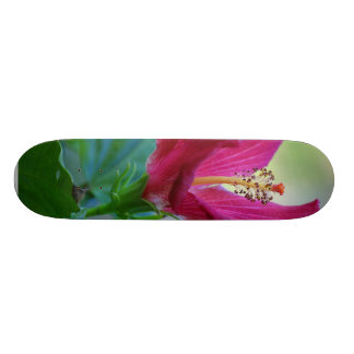 Hibiscus Flowers Skate Deck