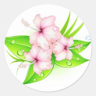 hibiscus flowers round sticker