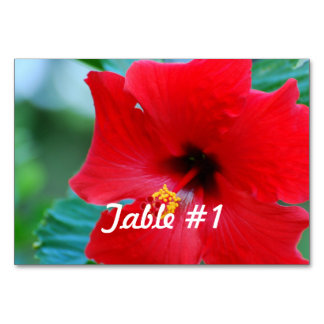 Hibiscus Flowers Table Cards
