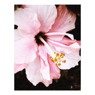 Hibiscus Flyer