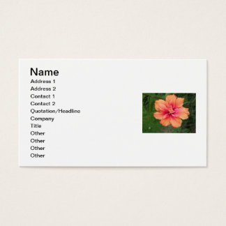 Hibiscus Full Color Business Card