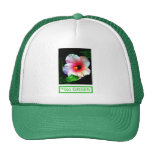Hibiscus Go Green 1 The MUSEUM Zazzle Gifts Mesh Hats