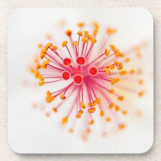 Hibiscus Hard Plastic Coasters (set of 6)