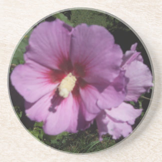 Hibiscus Hawaii Party Coaster 10