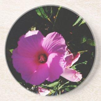 Hibiscus Hawaii Party Coaster 2 coaster