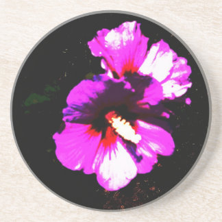Hibiscus Hawaii Party Coaster 4