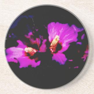 Hibiscus Hawaii Party Coaster 5