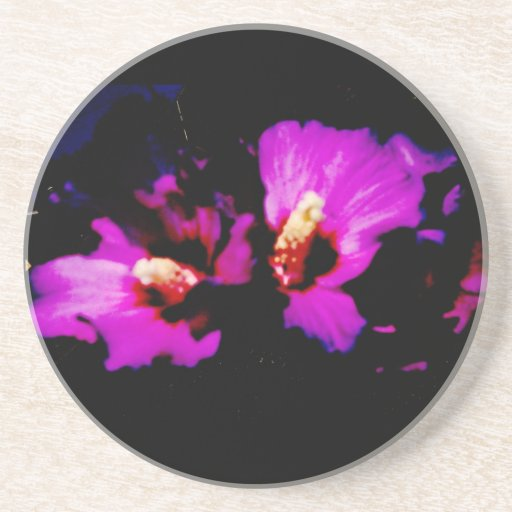 Hibiscus Hawaii Party Coaster 5