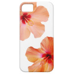 Hibiscus hawaiian flowers photo aloha kona modern iPhone SE/5/5s case