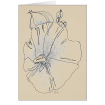 Hibiscus in pale ochre