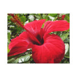 Hibiscus in red gallery wrap canvas