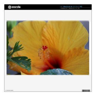 Hibiscus laptop skin