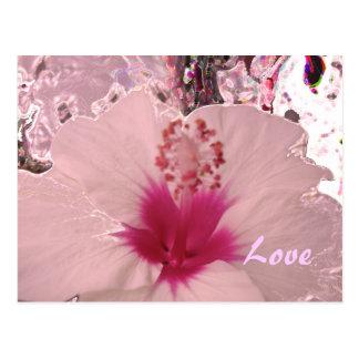 Hibiscus Love Postcard