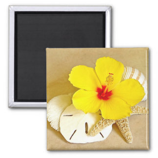 Hibiscus on Shells Magnet
