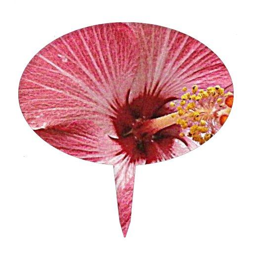 Hibiscus Photograph Cake Pick