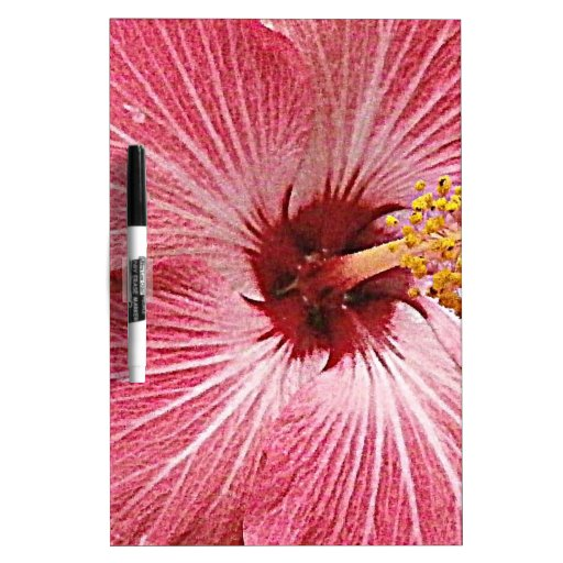 Hibiscus Photograph Dry Erase Board