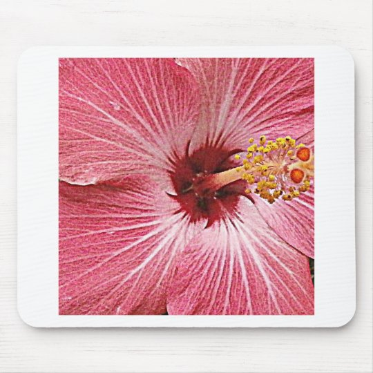 Hibiscus Photograph Mouse Pad