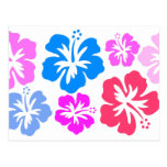Hibiscus Postcards