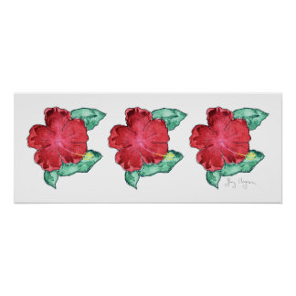 Hibiscus Posters and Prints