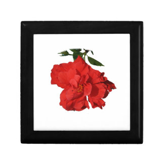 Hibiscus Red Flower Photograph Design Gift Box