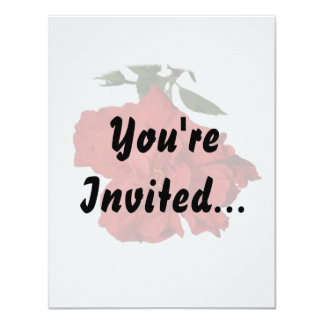"Hibiscus Red Flower Photograph Design 4.25"" X 5.5"" Invitation Card"
