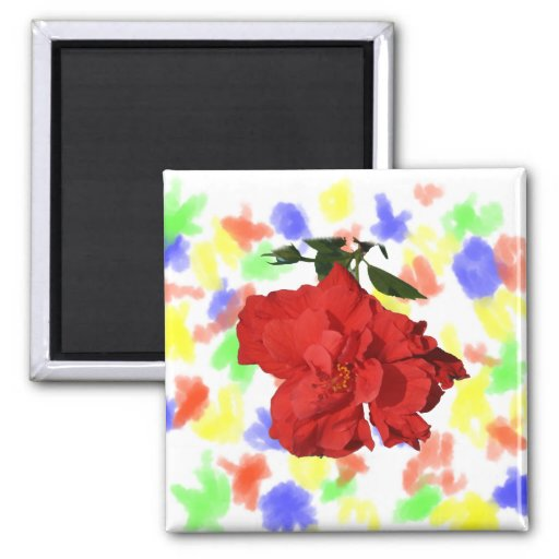 Hibiscus Red Flower Photograph Design Refrigerator Magnets
