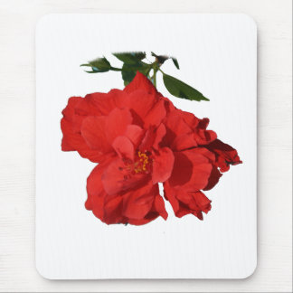 Hibiscus Red Flower Photograph Design Mouse Pad