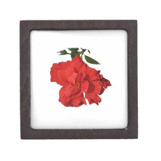 Hibiscus Red Flower Photograph Design Premium Trinket Boxes