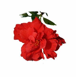 Hibiscus Red Flower Photograph Design Standing Photo Sculpture