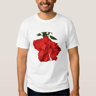 Hibiscus Red Flower Photograph Design Tee Shirts
