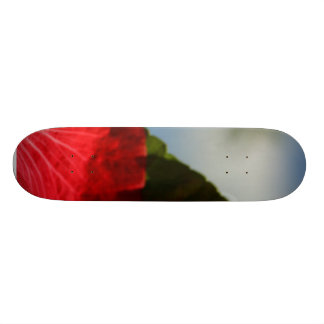 Hibiscus Red Flower Skateboards