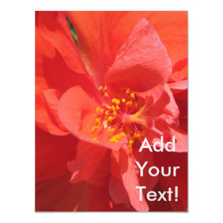 Hibiscus Red Flowering Plant Magnetic Card