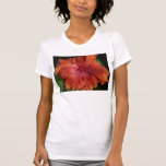 hibiscus,red t shirts