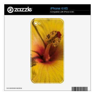 Hibiscus Skin For The iPhone 4S