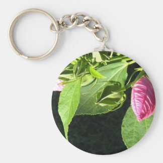 Hibiscus Soon to Blossom Key Chains
