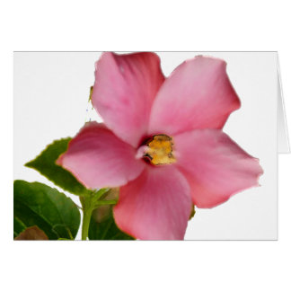 Hibiscus Thank You Card in French