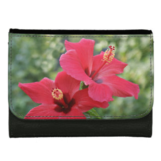 Hibiscus Wallet