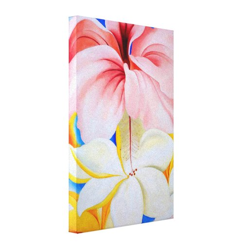 Hibiscus with Plumeria Canvas Print