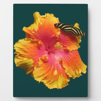 Hibiscus with Zebra Longwing Butterfly Plaque