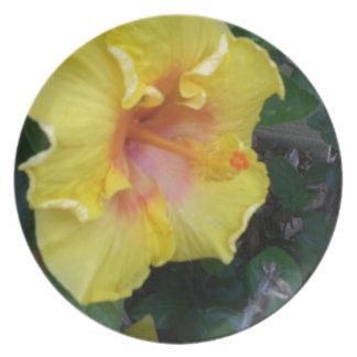 hibiscus yellow flower melamine plate