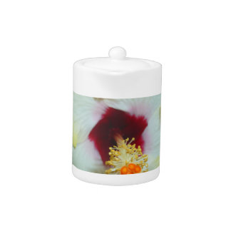 Hibiscus Yellow w Red center