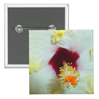 Hibiscus Yellow w Red center Buttons