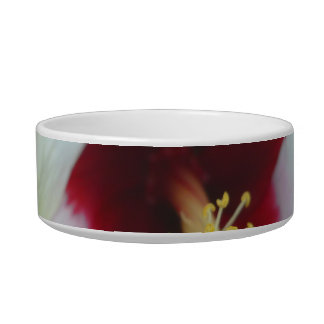 Hibiscus Yellow w Red center Cat Water Bowls